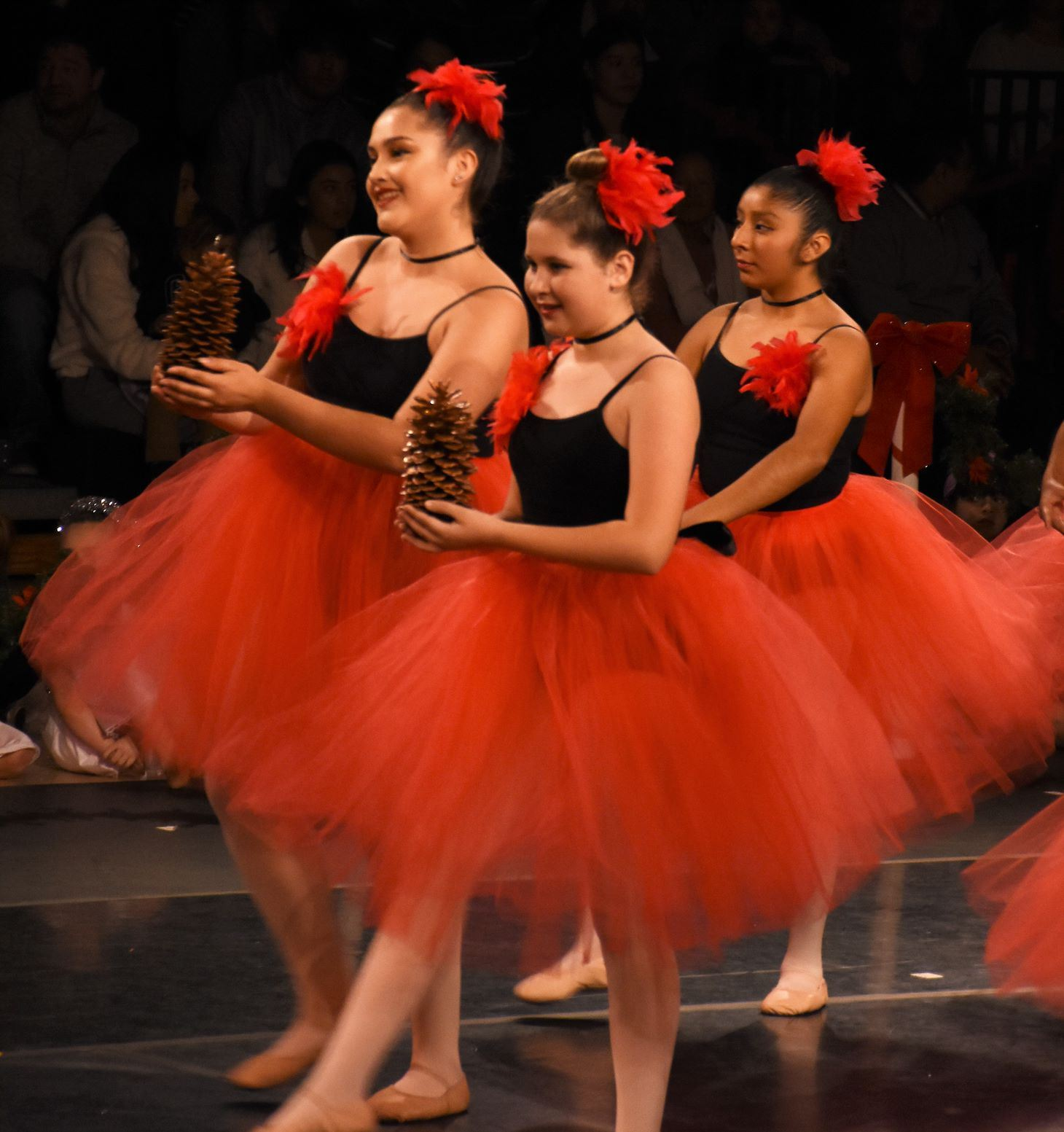 Photo of Cardinals in Flight at the Holiday Festival of Dance.